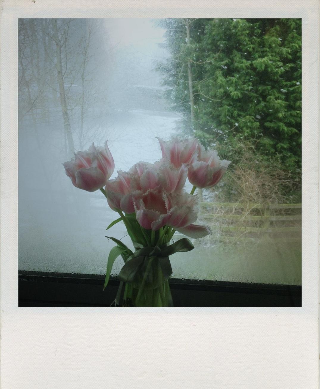Topsy-turvy Springtime